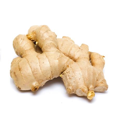 Ginger Fresh