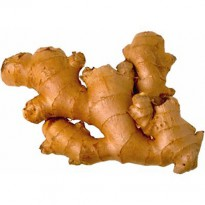 Ginger Seed